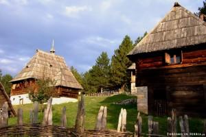 05 - Altipiano di Zlatibor