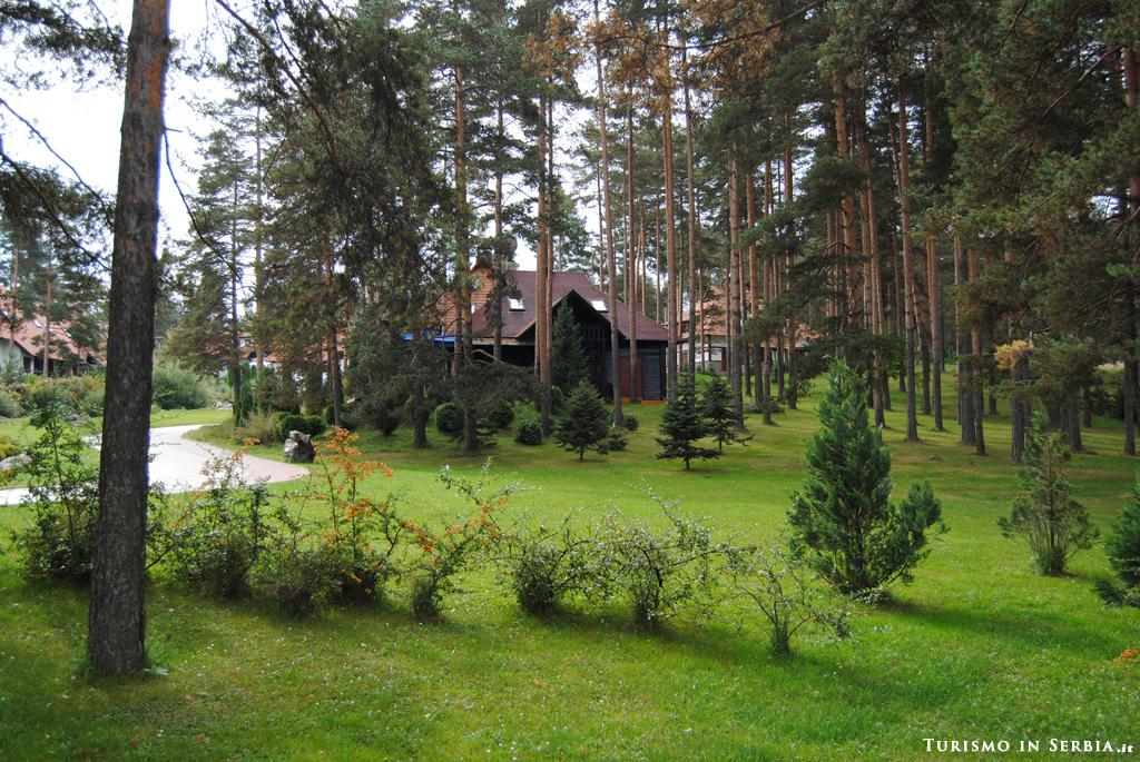 19 - Zlatibor - Kraljeve Vode [GALLERY]