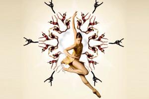 Belgrade Dance Festival 2012