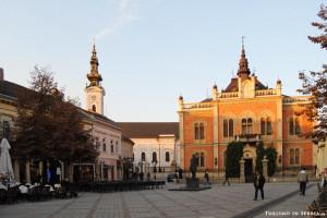 01 - RIcerca Novi Sad